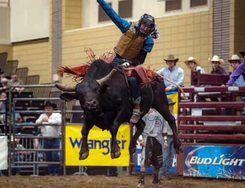 Tickets on Sale for 8 Seconds to Glory Champion Bull Riding, Aug 14, 2021