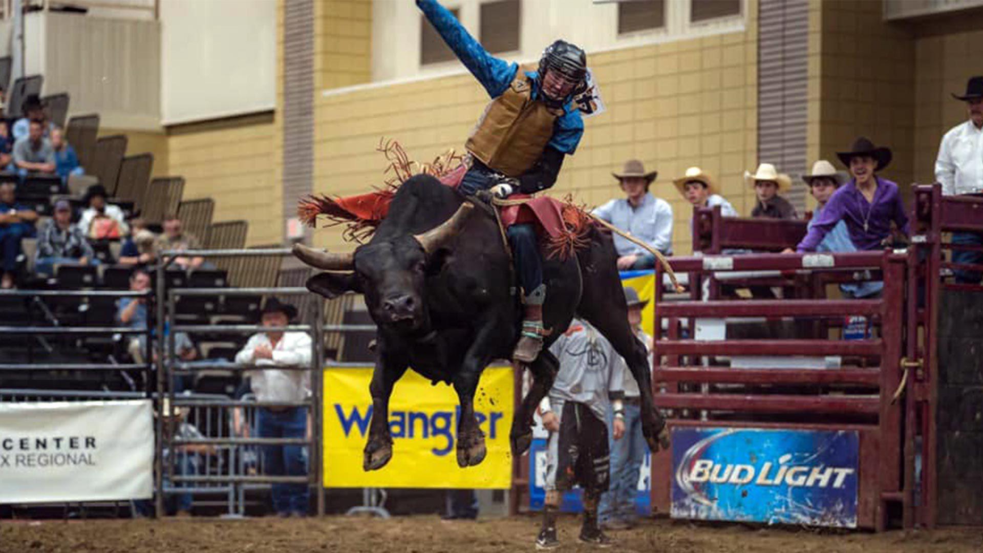 bull rider photo